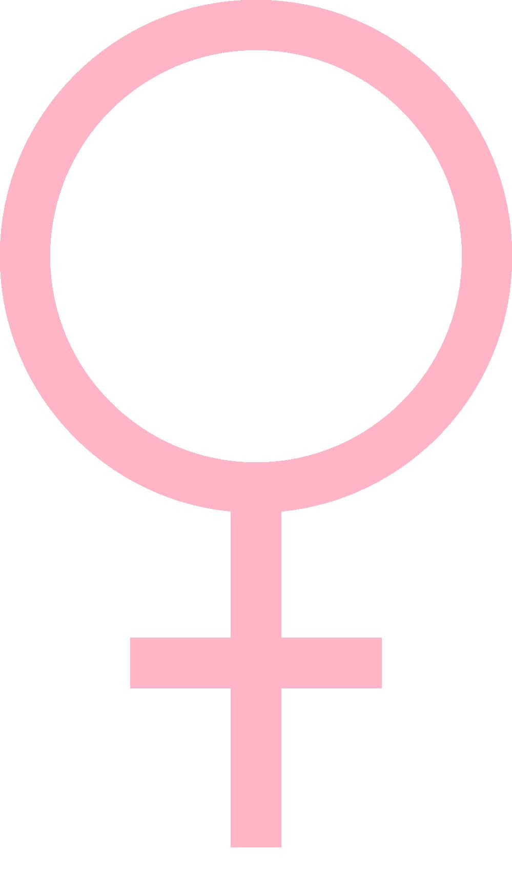 of feminist commentary   Feminist Symbol