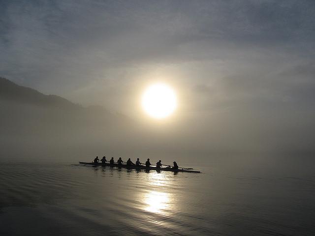 rowingfog