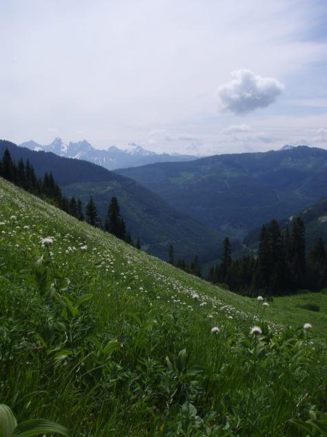 Image: Cheam Peak Hike