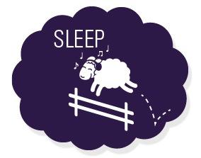 "Image: cartoon of a sheep jumping over fence with the word ""sleep"" overhead. Credit: http://tlp.advancedbrain.com/a/sleep/"