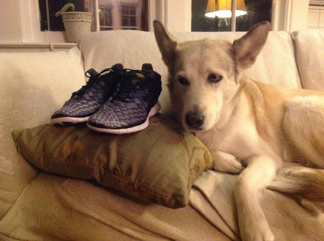 Abbie checks out my new shoes, reserves judgement