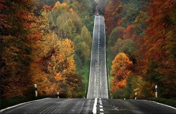 downhill in autumn