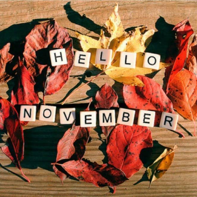 helo november