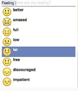 """Facebook emoticons, including """"feeling fat,"""" with a chubby face."""