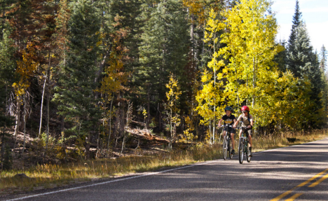 Two women cycling on the road on a fall day; trees with fall colors in the background.
