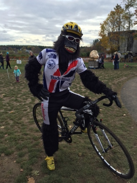 Cyclist in gorilla suit with racing kit over the suit. With yellow helmet and shoes.