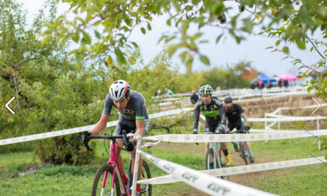 Male cross racers biking through an orchard course with apple trees on the side.
