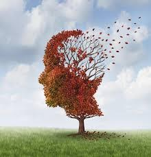 Image description: A tree with red leaves in the shape of a head. One third of the leaves blowing away.  Also, green grass and blue sky and white clouds.