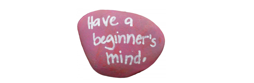 "pink rock with inscription ""have a beginner's mind"""