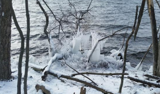 A variety of ice formations made by splashing water and wind against branches