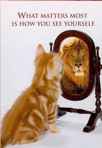 kitten lion mirror.jpg