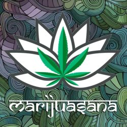 "Image description: Green marijuana leaf nestled inside a white lotus flower with a swirly blue, purple, and green background. Underneath it says ""marijuanasana."""