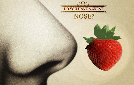 "Graphic of a nose and a strawberry, and text saying ""do you have a great nose?"""