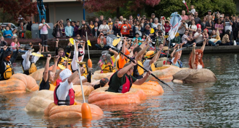 The Tualatin West Coast Giant Pumpkin Regatta start line (I think), with lots of people inside pumpkins with paddles (and wearing life vests for safety, of course).