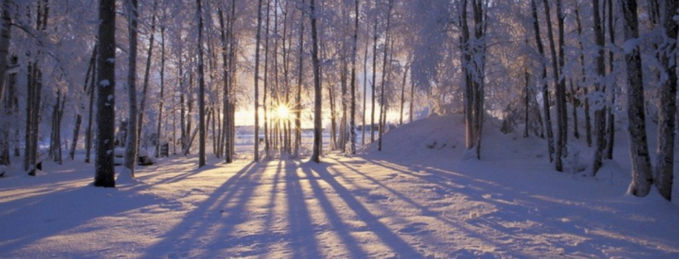Winter snowy woods with the sunset in the background, making shadows.