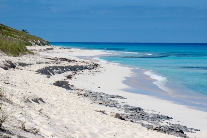 Image description: white sandy beach with sloping green hill on the left, turquoise gentle surf on the right, and a rich blue sky.