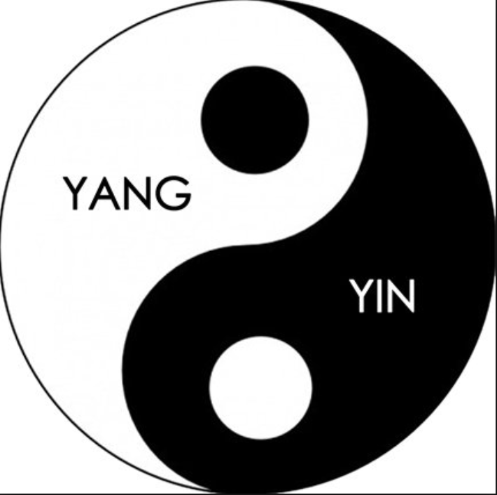 A black and white circle with the swirls of yin and yang.