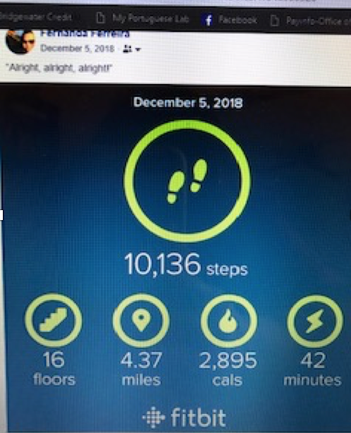 Fernanda's step count for a sample day, posted on Facebook.