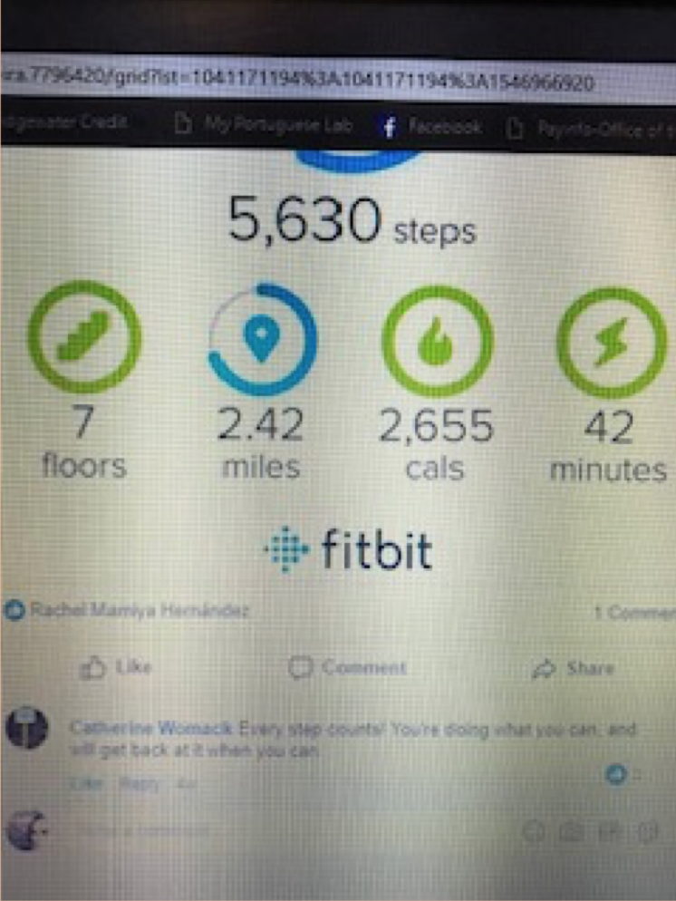 "Sample step count for a ""non-goal"" day; this one is 5,630 steps."