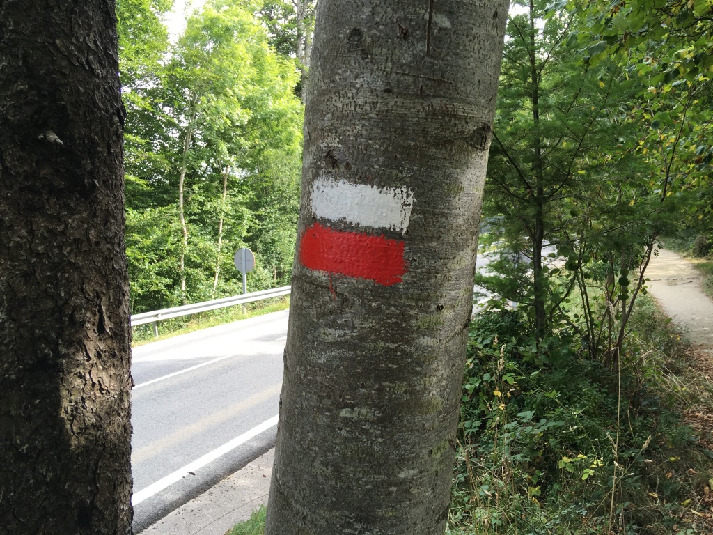 a horizontal white bar above a red one, painted on a tree.