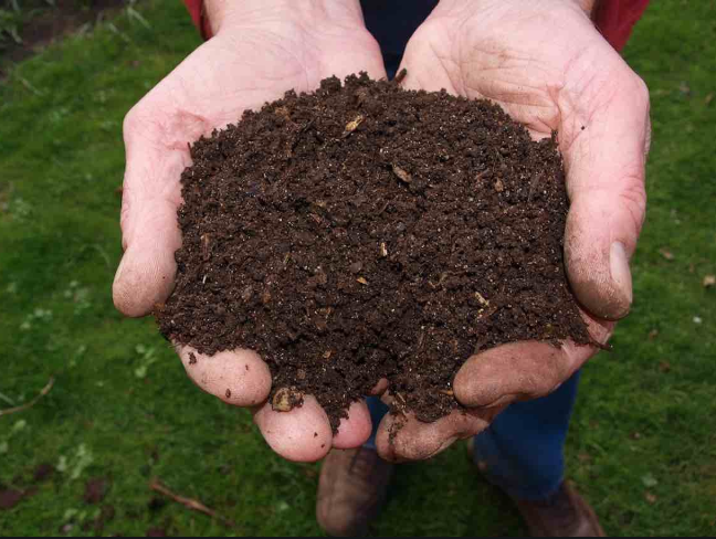 What compost becomes-- good dirt.