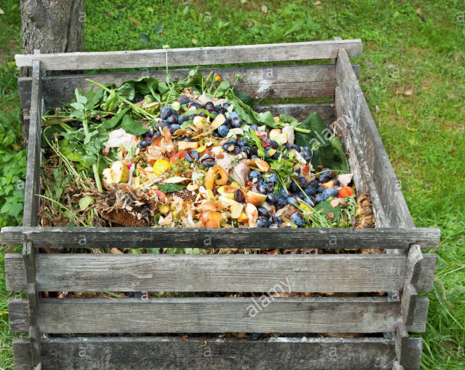 Composting in progress.