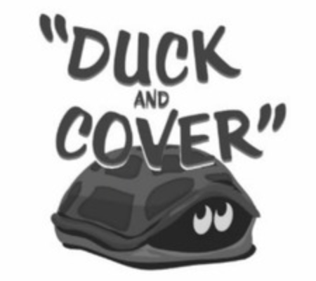 """A cartoon turtle, hiding in its shell, with the message """"duck and cover""""."""