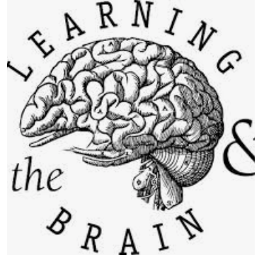 Learning and the brain logo