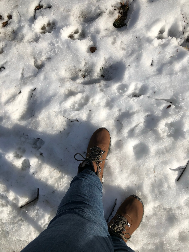 A top-down photo of the author's feet in a pair of brown hiking boots , she is standing on some snow.