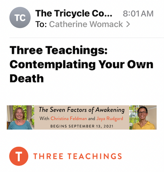 Recent newsletter from Tricycle: the Buddhist Review. This week's topic: Contemplating your own death. Party on!