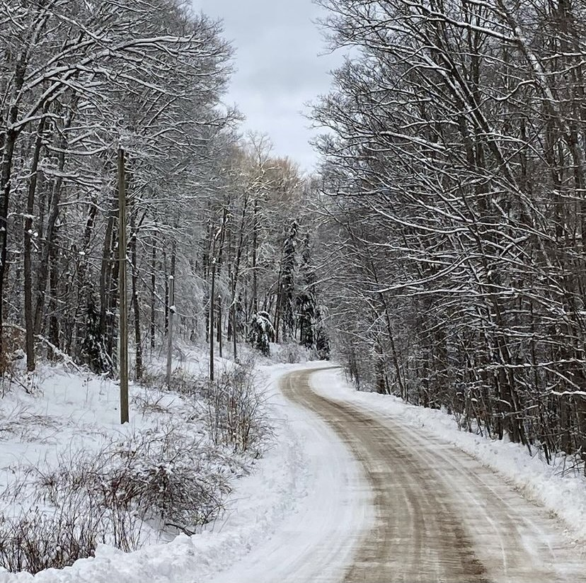Image description: a rural road extends around a curve. The ground is covered with snow and there are snow-covered trees on either side of the lightly-plowed road.