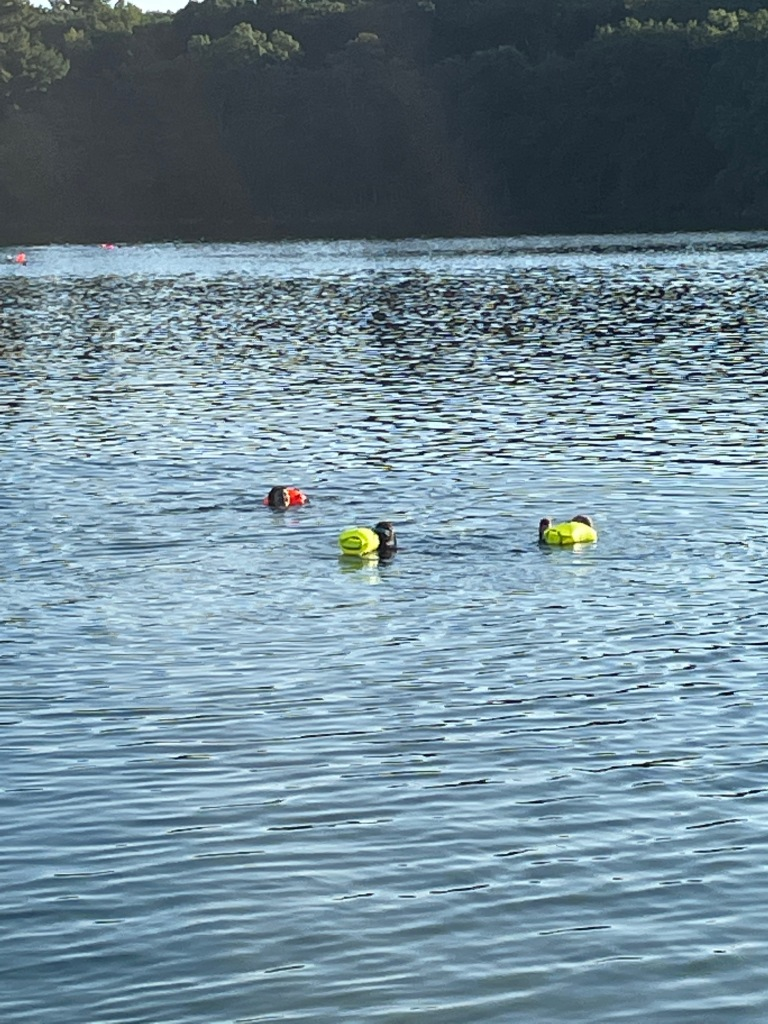 Three swimmers, with their swim buoys, moving in the middle of the pond.